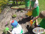 Mali Ogrodnicy 13