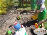 Mali Ogrodnicy 14